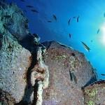 Fondos Submarinos de San Andrés y Sauces · La Palma · Apartamentos Miriam